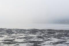 在洪水期间的湖 免版税库存照片