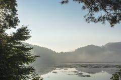在洪水期间的湖 库存图片