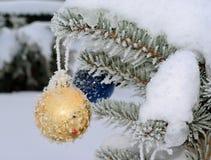 在活冷杉木的金黄新年球与霜和雪 免版税库存图片