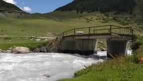 在流动在山谷和青山,夏天森林的迅速河的桥梁 影视素材
