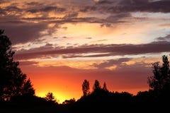 在流动的华丽的秀丽大草原日落反弹萨斯喀彻温省 免版税库存照片
