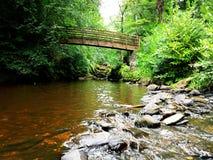 在流动的河的老木桥 库存图片