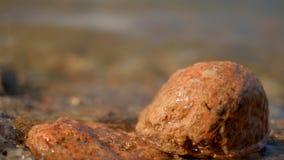 在浅水区特写镜头的岩石 股票录像