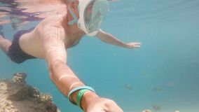 在浅水区的废气管游泳与珊瑚鱼,红海,埃及 股票视频