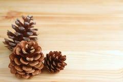 在浅褐色的木桌上的三个自然干燥杉木锥体,与设计的自由空间 库存照片