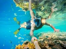在浅水区的废气管游泳与珊瑚鱼,红海,埃及 库存图片