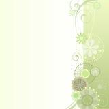 在浅绿色的花卉背景 向量例证
