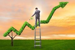在浇灌财政折线图的投资概念的商人 库存图片