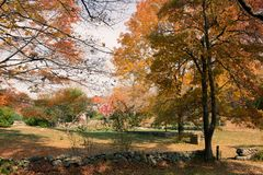 在测流堰农场的秋天 库存图片