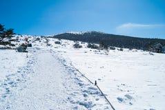 在济州海岛韩国的Hallasan山在冬天 免版税库存图片