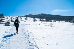 在济州海岛韩国的Hallasan山在冬天 图库摄影