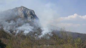 在浓烟盖的森林的时间间隔英尺长度,当闷燃时 股票录像