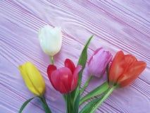 在浪漫一次桃红色木春天精美背景的行军的郁金香秀丽花束新假日 免版税库存照片