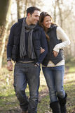 在浪漫步行的夫妇在冬天 库存图片