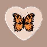 在浪漫背景的抽象蝴蝶 库存照片