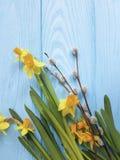 在浪漫蓝色木婚礼的背景的黄水仙美好的邀请纹理典雅的邀请杨柳 库存图片
