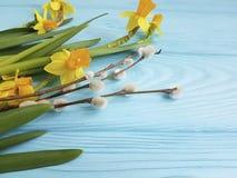 在浪漫蓝色木婚礼的背景的黄水仙美好的邀请言情典雅的邀请杨柳 免版税库存图片