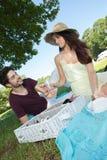 在浪漫野餐期间的画象年轻夫妇在乡下 免版税库存图片