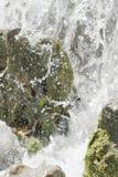 在浪端的白色泡沫的瀑布场面 免版税图库摄影