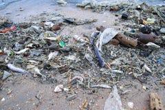 在浮游生物开花以后的污染 库存照片