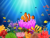 在海下的小丑鱼 向量例证