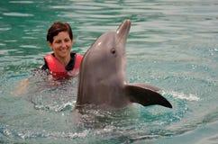 在海世界英属黄金海岸澳大利亚的海豚展示 免版税库存图片