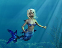 在海中美人鱼年轻人 库存图片