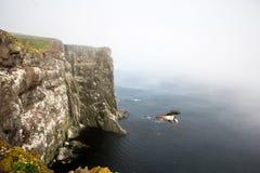 在海冰岛下的海鹦飞行 免版税库存照片