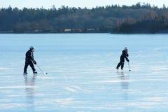在海冰的曲棍球 库存图片