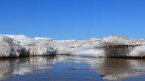 在海冰融解 库存图片
