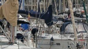 在海口停泊的游艇 股票视频