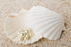 在海壳的多颗珍珠在沙子 库存照片