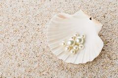 在海壳的多颗珍珠在沙子 免版税库存图片