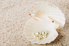 在海壳的多颗珍珠在沙子 库存图片
