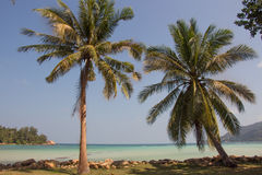 在海岛上的假期 库存照片