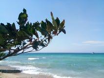 在海岛上的夏天 库存照片
