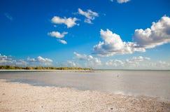 在海岛上的热带离开的完善的海滩 库存照片