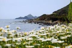 在海岛上的看法有在Sanguiner群岛,法国的一座灯塔的 免版税库存图片