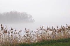 在海岛上的雾 库存照片