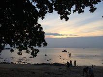 在海岛上的黄昏有silhoutte树的 库存图片