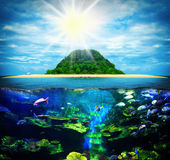 在海岛上的晴朗的热带海滩 免版税库存图片