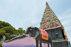 在海岛印度寺庙,斯里兰卡的大象形象 库存照片