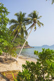 在海岛酸值张的美丽的热带海滩 免版税库存照片