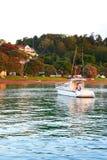 在海岛,北岛,新西兰海湾的日出  免版税库存照片