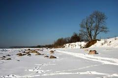 在海岸的冬天横向 免版税图库摄影