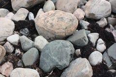 在海岸的冰砾 免版税图库摄影