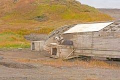 在海岸的多壳和老小船 库存照片