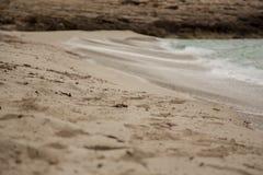 在海岸的波浪 库存照片