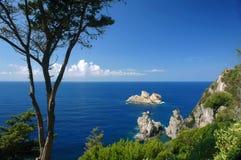 在海岸的结构树和峭壁在Corfu海岛 免版税库存图片