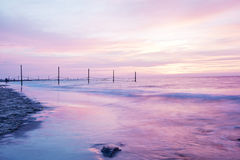 在海岸的美好的玫瑰色日落 库存照片